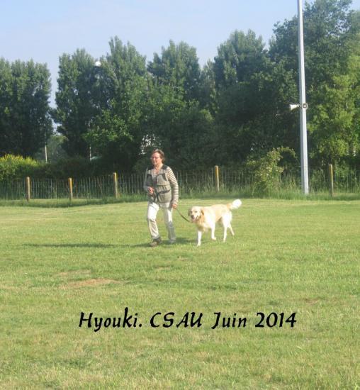 Hyouki à Véronique Lepeintre CSAU