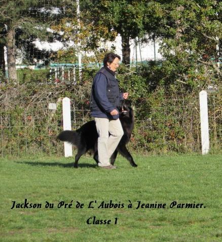 Jackson du Pré de L'Aubois classe 1