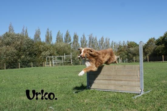 Urko classe 3 à Liliane Kindt