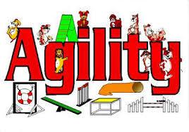 Agility.
